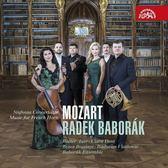 【停看聽音響唱片】【CD】巴伯羅柯 / 莫札特:法國號的交響協奏曲