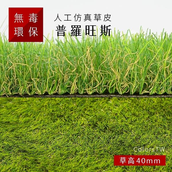 人工仿真草皮【普羅旺斯】尺寸1X1m 人造草皮 塑膠草皮 園藝 景觀 美勞 建築材料 綠化 綠建材