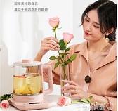 養生壺 生活元素養生壺辦公室家用多功能小型燒水壺保溫一體煮茶器煮茶壺220V XL美物
