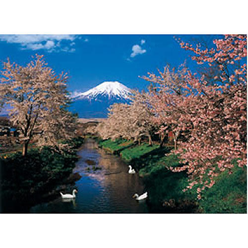 【P2 拼圖】風景之美系列-櫻花富士山 520片拼圖 HM52-599