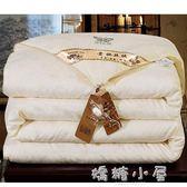 加厚全棉絲棉被芯被子春秋冬被太空調被雙人冬天保暖冬季  YTL  嬌糖小屋