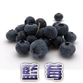 【果之蔬】智利空運鮮採藍莓X6盒(每盒125克±10%)
