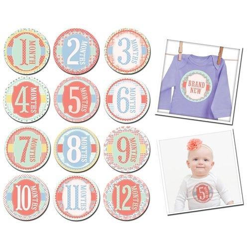 美國Sticky Bellies 寶寶月份貼紙1-12M(花園派對)[衛立兒生活館]