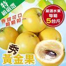 【果之蔬-全省免運】台灣黃金果X5斤±1...