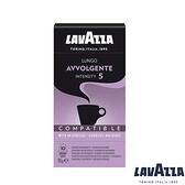 【LAVAZZA】Lungo Avvolgente 咖啡膠囊 (100顆入)