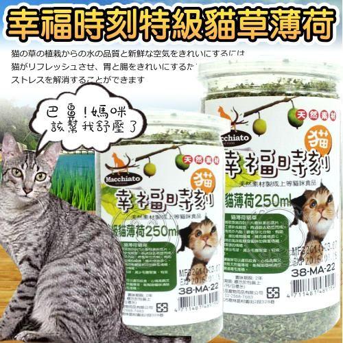 【 培菓平價寵物網】幸福時刻》頂級貓草細葉250ml/瓶
