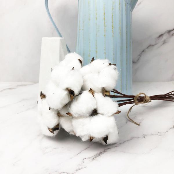 進口乾燥天然棉花單支-乾燥花圈 乾燥花束 拍照道具 室內擺飾 乾燥花材 裝飾插花鄉村風-250元/10支