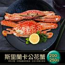 【屏聚美食】斯里蘭卡公花蟹(200~250g/隻)
