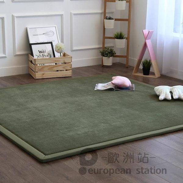 地毯/日式榻榻米珊瑚絨加厚飄窗滿鋪