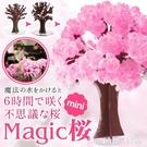 結晶樹 外貿安全標粉色櫻花樹聖誕節玩具紙樹開花會開花的結晶下雪樹禮品 星河光年