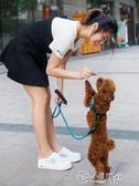 狗狗牽引繩 狗狗牽引繩小型犬狗鍊子泰迪比熊博美狗繩幼犬遛狗可調節寵物項圈