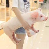 搞怪創意仿真母豬抱枕毛絨玩具