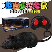 整蠱貓玩具遙控仿真老鼠成人遙控玩具奇特創意禮物惡搞整人神器 全館免運