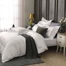 鴻宇 SUPIMA500織 四件式雙人薄被套床包組 清雅春芽 刺繡白M2657