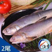 【漁季】野生鮮凍午仔魚*2尾(350g±10%/尾)