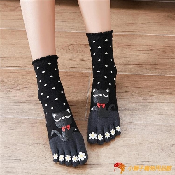4雙裝 純棉五指襪女全棉中筒棉襪招財貓保暖分腳趾襪【小獅子】