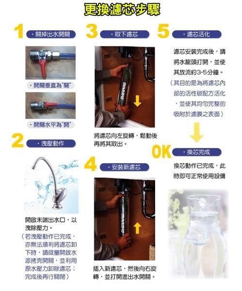 EVERPURE愛惠浦公司貨家用BH2濾心(抑垢+銀離子抗菌型)【12期0利率】