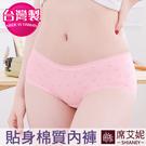 少女 MIT舒適 貼身內褲 低腰 M/L/XL 台灣製造 no.410010-席艾妮SHIANEY