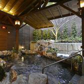 台北北投大地溫泉酒店大眾風呂裸湯泡湯券(10-3月假日+150)