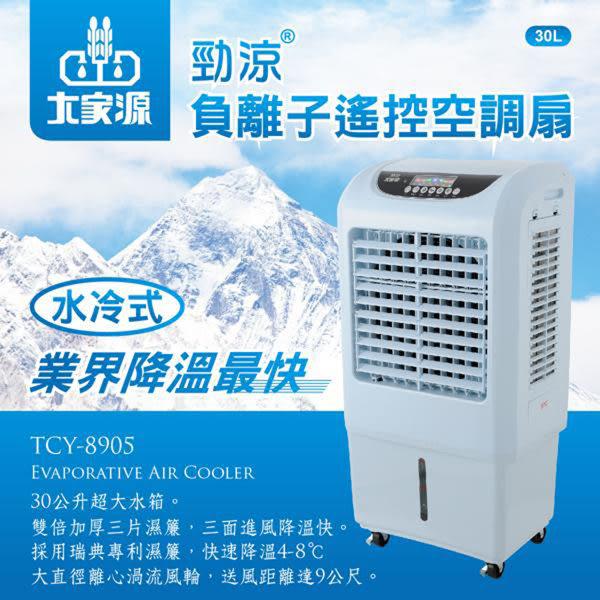 【艾來家電】【分期0利率+免運】大家源 30L勁涼負離子遙控空調扇/水冷扇-藍色TCY-8905