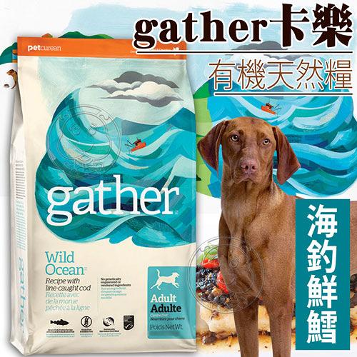 【培菓平價寵物網】gather卡樂》有機天然糧海釣鮮鱈成犬配方-300g0.66磅
