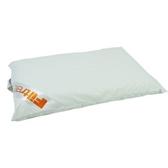 3M 防蹣記憶枕心 平板支撐型 L尺寸款