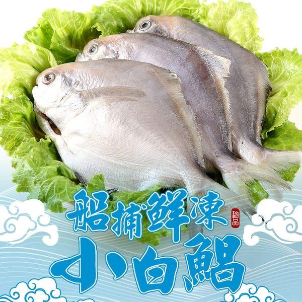 【愛上新鮮】船捕鮮凍小白鯧16隻組(4隻裝/400g±10%/包)