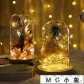 聖誕節飾品-銅線LED燈串滿天星星燈串燈圣誕節電池小彩燈 MG小象