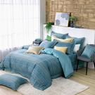 鴻宇 SUPIMA500織 四件式雙人加大兩用被床包組 海克力斯 台灣製2167