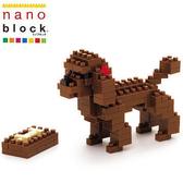 【日本KAWADA河田】Nanoblock迷你積木-紅貴賓狗 NBC-060