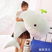 毛绒玩具 毛絨玩具女生抱枕公仔可愛懶人抱著睡覺的大布娃娃玩偶鯨魚萌海豚 LN5906 【極致男人】