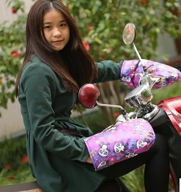 [協貿國際]  冬季保暖電動車手套 (1雙入)