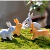 CARMO跳躍/坐姿小兔兔多肉微景觀(單隻) 盆栽裝飾 暖心 【A019020】