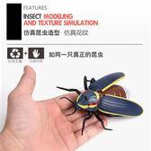 遙控螢火蟲仿真昆蟲模型玩具發光創意整蠱道具男動物總動員昆蟲記