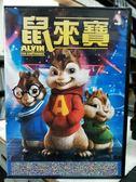 挖寶二手片-Y30-051-正版DVD-動畫【鼠來寶】-國英語發音