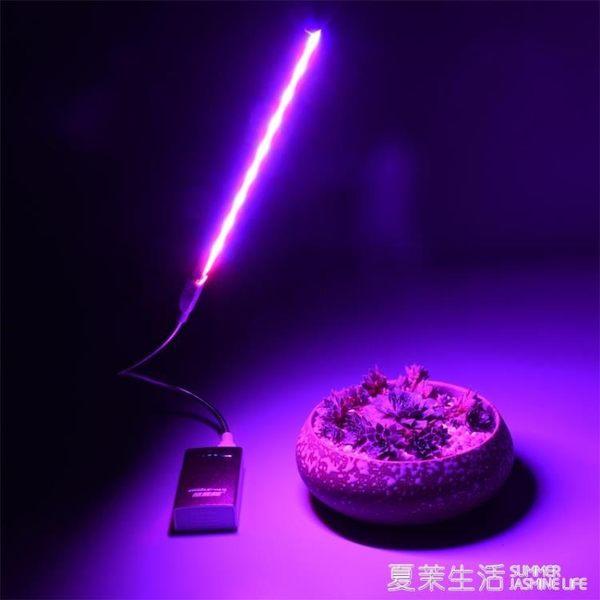 植物燈 USB led多肉紅藍燈 室內仿太陽光補光燈 全光譜 花卉 植物生長燈220V『夏茉生活』