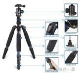 思銳A1205三腳架套裝 碳纖維單反相機旅行便攜三角架手機自拍支架QM『櫻花小屋』