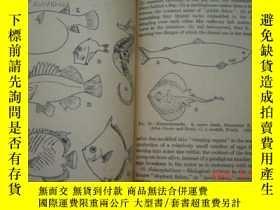 二手書博民逛書店BIOLOGY罕見OF THE VERTEBRATES(脊椎動物