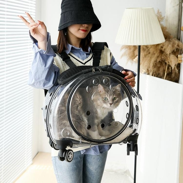 透明泡泡箱外出便捷拉桿包透氣寵物背包貓咪旅行箱大容量手提狗包