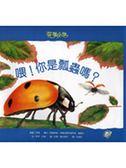 (二手書)喂!你是瓢蟲嗎?:花園小徑(1)