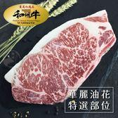 【超值免運】美國日本種9+和牛老饕肋眼牛排2片組(280公克/1片)