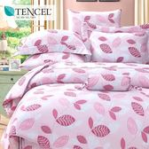 ✰雙人 薄床包兩用被四件組✰ 100%純天絲《帕芙洛-粉》