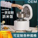 【夏日新品】110V/220V3L瀝米電飯鍋 智慧自動米湯分離瀝米飯 電飯鍋中/英文面板