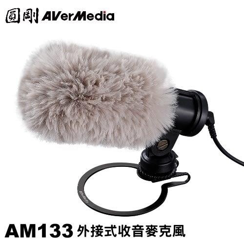 圓剛 AM133 外接式收音麥克風