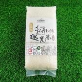 【南紡購物中心】【有機米】臺南越光米 台南16號-1kg