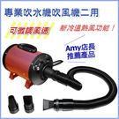 *WANG*新冷溫熱風功能可微調風速 專業吹水機吹風機二用-amy店長推見產品-1100V