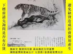 二手書博民逛書店Draw罕見Tiger by 8 big Painter of Japan and China book Ink