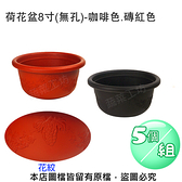荷花盆8寸(無孔)-咖啡色.磚紅色 5個/組咖啡色