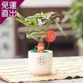 迎光 財神陶瓷植栽【免運直出】
