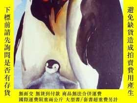 二手書博民逛書店英文原版罕見少兒百科繪本 Animal Teachers 動物老